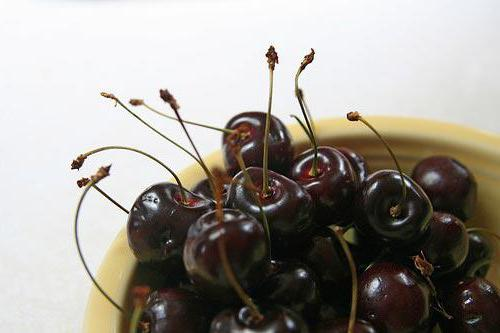Cherry Black large: description of the variety, planting and care